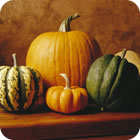 Great Pumpkins and Other Winter Squash