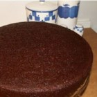 Click for larger view: A perfect looking cake, totally unadorned.